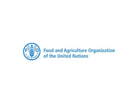 FAO report highlights ambitious desert fish farming projects launched by UAE