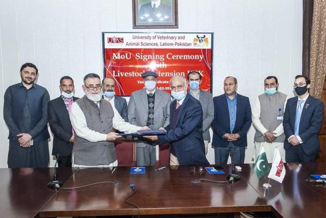 UVAS signs MoU with Livestock (Extension) Department KPK to train PMU staff, farmers