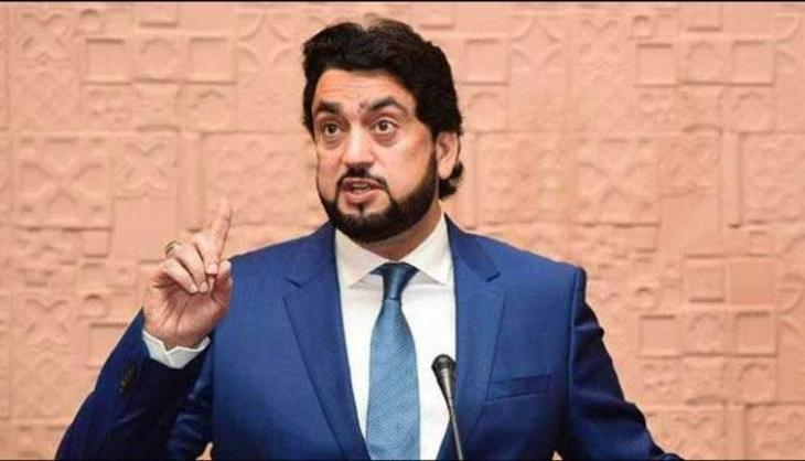 Expansionist designs of India,  a threat to world peace: Shehryar Afridi