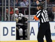 NHL referee Peel banned after making comments on penalty