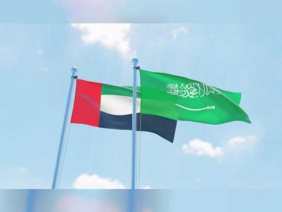الإمارات والسعودية تؤمنان ثلاثة أرباع احتياجات اليابان من النفط خلال يناير الماضي