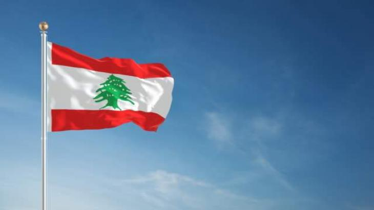 Lebanese Crisis Helped Popularize Cheaper, Local Goods - Foodstuff Importers Syndicate