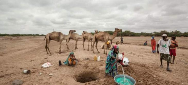 UN calls for urgent action to prevent disaster in Somalia