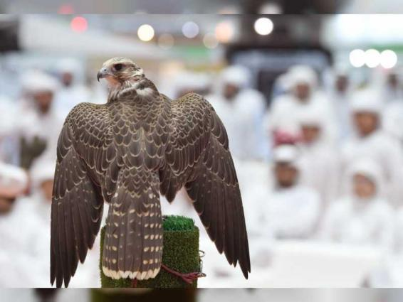 ADIHEX contributes to promoting captive-bred falcons