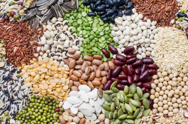 SCKP approves 41 species of seeds for cultivation