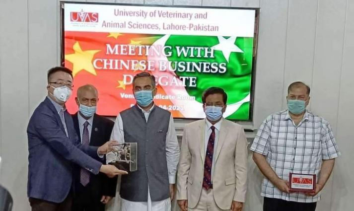 Chinese delegation discusses collaboration with UVAS