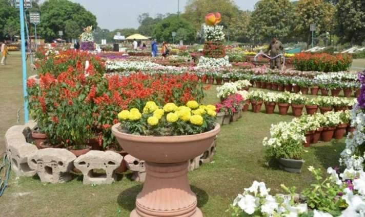 Spring flower show organized by PHA on median of Murree Road attracts citizens