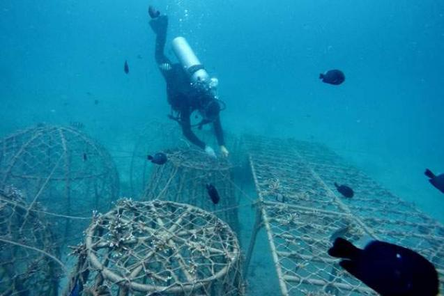 Chinese resort city Sanya places artificial reefs to improve marine ecology