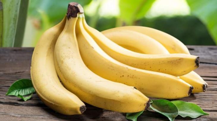 Ecuador To Continue Banana Exports As No Fungus Found In Country