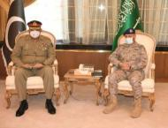 Pak-Saudi cooperation to have positive impact on regional peace,  ..