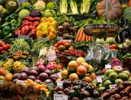 FAO organizes virtual workshop in connection with UN Food Summit ..