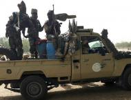 Chad, C. Africa at loggerheads after troops killed at border