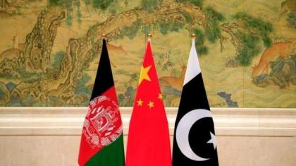 'Pak-China-Afghanistan trilateral cooperation will lead to regional development, peace': Speakers