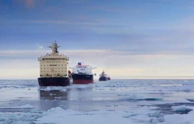 West Uses Environment Topic to Derail Russia's Projects in Arctic - Security Council