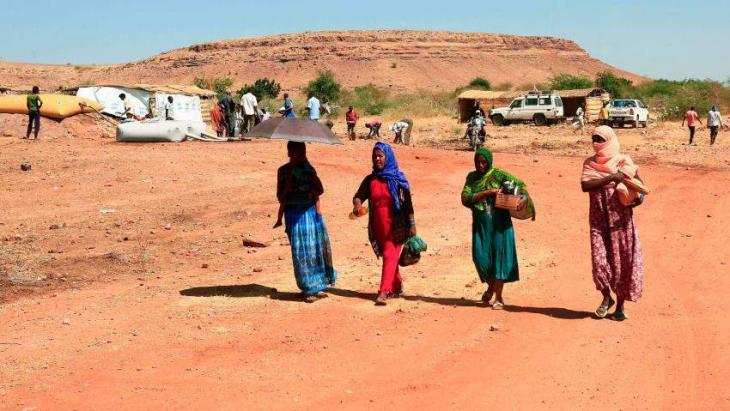 Anti-farming 'campaign' under way in Tigray: state official