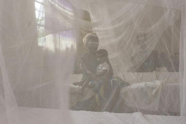 Niger distributing more than 4 mln mosquito nets to fight malaria
