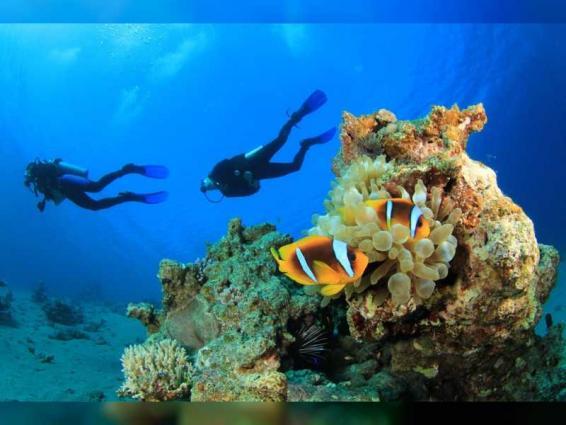 flydubai adds Sharm El Sheikh to its network