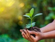 Environment Day to be observed with pledge to save the Earth