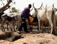 At least 14 dead as farmers, herders clash in CAR