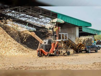 Tadweer opens licencing for Wood Waste Recovery, Recycling Facilities