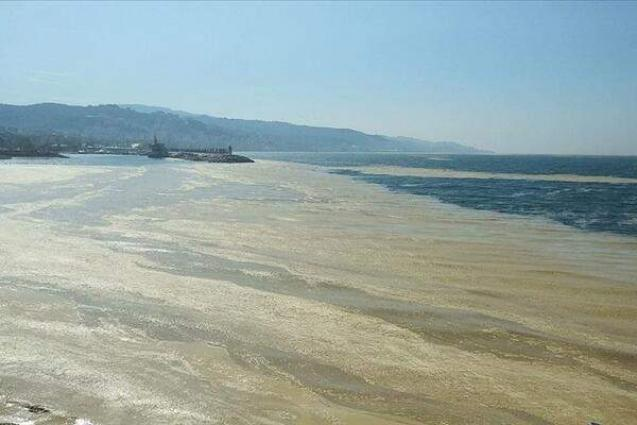 Marine Researchers Raise Alarm Over Sea Slime Plaguing Waters off Istanbul