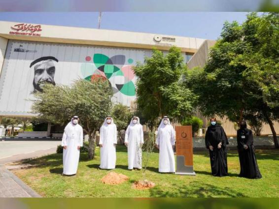 DEWA plants trees, organises virtual activities to mark World Environment Day