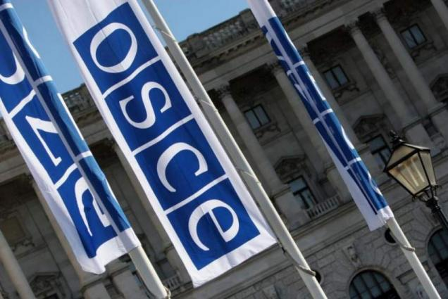 Russia's OSCE Envoy Sees Kiev-NATO Drills Close to Donbas Conflict Zone as Provocation