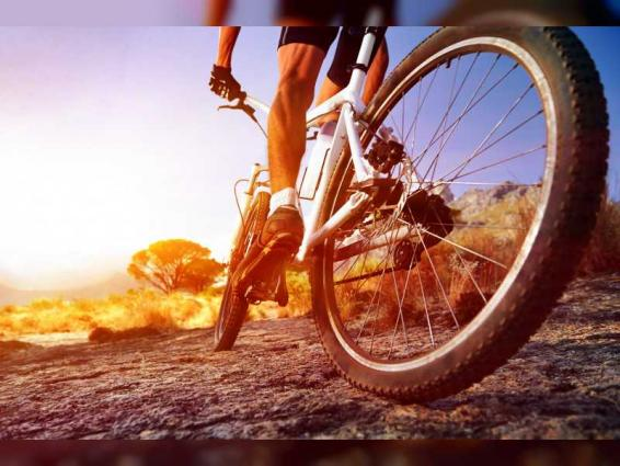 Dubai Police urge cyclists to adhere safety guidelines, traffic laws