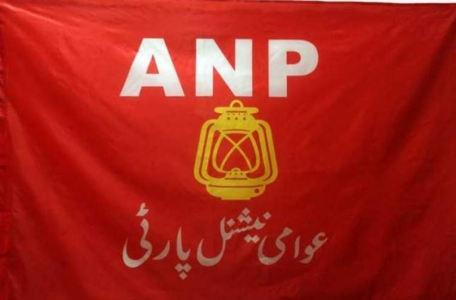 ANP sought applications for social media committee, secretary youth affairs