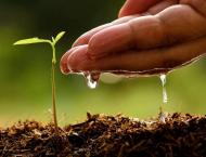 KP Forest Dept to plant 41.194m saplings during monsoon: Conserva ..