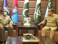 South Africa National Defence Force Chief calls on CJCSC