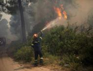 Firefighters battle forest blaze near Athens suburbs