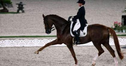 Werth makes Olympic history as Germans win team dressage