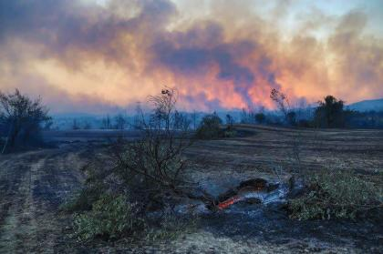 Wildfire Raging in 6 Turkish Provinces - Agriculture Minister
