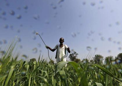 'No compromise on fake fertilizer, pesticides'