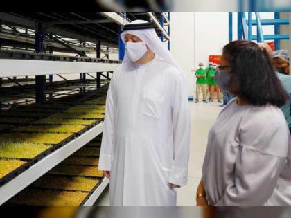 Al Aliyo HydroFarms embarks on hydroponic fodder project in Hamriyah Free Zone