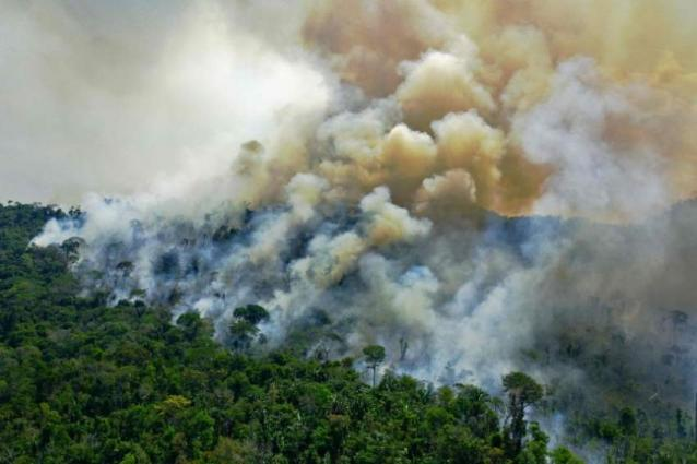 Warming, deforestation turn Amazon into source of CO2