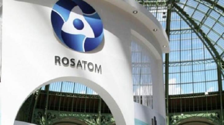 Russia's Rosatom Has Proposals on South Africa's Nuclear Energy Development - Ministry