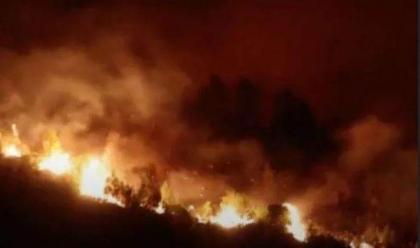 Fire in Rhodes Under Control as Greece Continues to Fight Extreme Heat