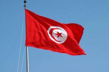 Tunisia's Ennahdha party ready for 'self-critique'
