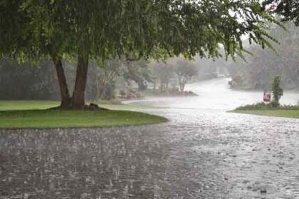 Rain in city provides respite from humidity