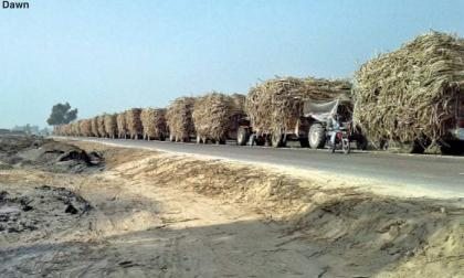 Dozens of tractor-trolleys seized due to  dust pollution