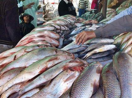 Fish health lab would helpful in controlling fish diseases
