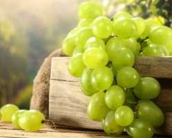 Grapes Angoor