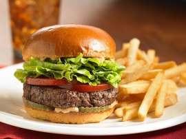 Net Burger