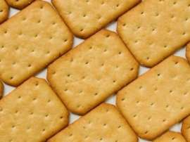 Cracker Biscuit