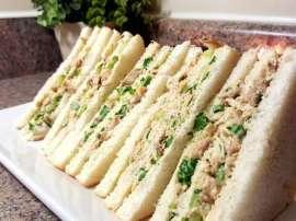 Malai Boti Sandwich