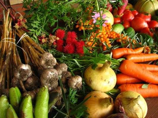 Quick Vegetable Dish Recipe In Urdu
