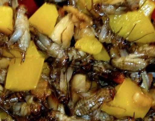 Paktay Salan Main Zehrili Chez Ka Shak Door Kernay Ka Tarika Recipe In Urdu