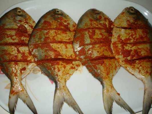 Pamphlet Fish Recipe In Urdu